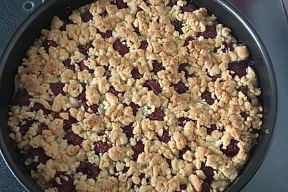 Himbeer-Pudding-Streuselkuchen 2