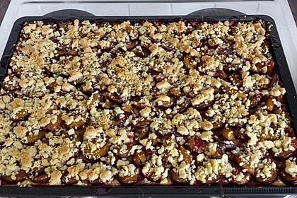 Zwetschgen-Streuselkuchen mit Pudding 83