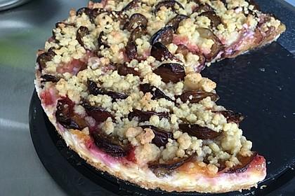 Zwetschgen-Streuselkuchen mit Pudding 113