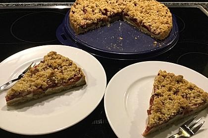 Zwetschgen-Streuselkuchen mit Pudding 15
