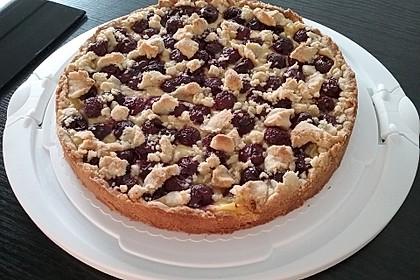 Zwetschgen-Streuselkuchen mit Pudding 1