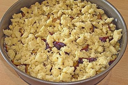 Zwetschgen-Streuselkuchen mit Pudding 137