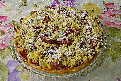Zwetschgen-Streuselkuchen mit Pudding 31