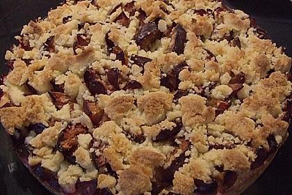Zwetschgen-Streuselkuchen mit Pudding 130