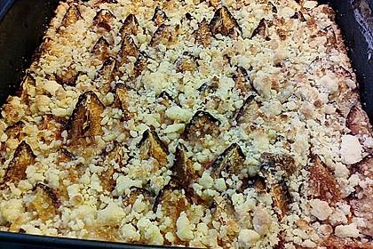 Zwetschgen-Streuselkuchen mit Pudding 98