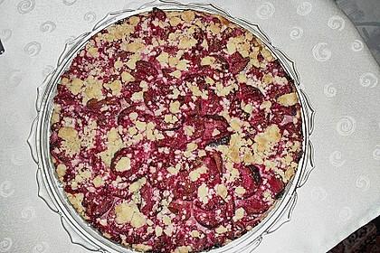 Zwetschgen-Streuselkuchen mit Pudding 79