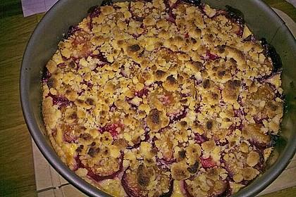 Zwetschgen-Streuselkuchen mit Pudding 142
