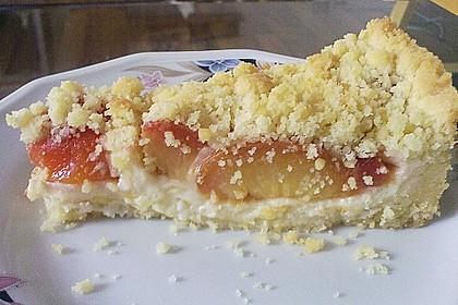 Zwetschgen-Streuselkuchen mit Pudding 64