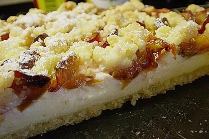 Zwetschgen-Streuselkuchen mit Pudding 38