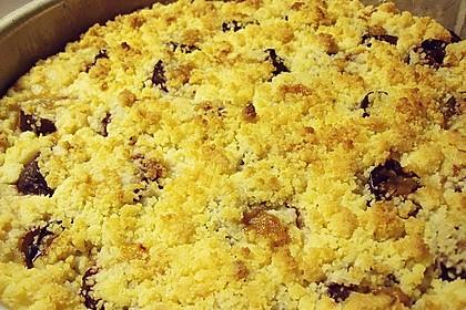 Zwetschgen-Streuselkuchen mit Pudding 128