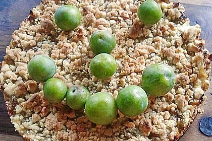 Zwetschgen-Streuselkuchen mit Pudding 146