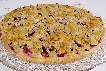 Zwetschgen-Streuselkuchen mit Pudding 5