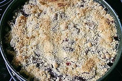 Zwetschgen-Streuselkuchen mit Pudding 125