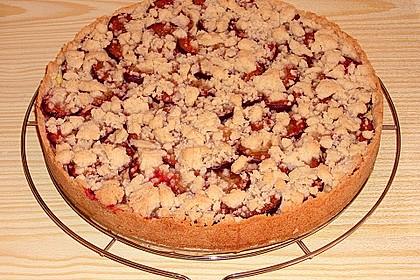 Zwetschgen-Streuselkuchen mit Pudding 75