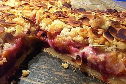 Zwetschgen-Streuselkuchen mit Pudding 27