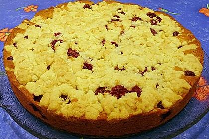 Easy Streuselkuchen mit Obst 19