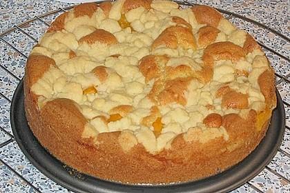 Easy Streuselkuchen mit Obst 41