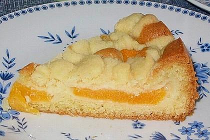 Easy Streuselkuchen mit Obst 17