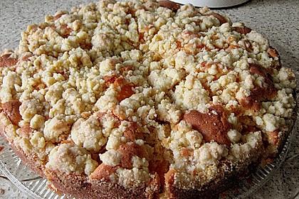 Easy Streuselkuchen mit Obst 42