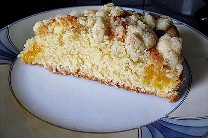 Easy Streuselkuchen mit Obst 18