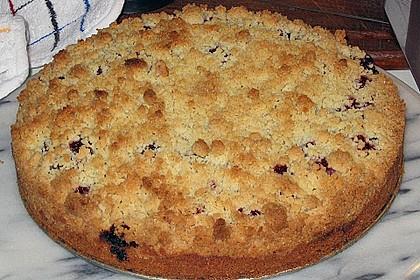 Easy Streuselkuchen mit Obst 9