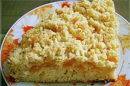 Easy Streuselkuchen mit Obst 46