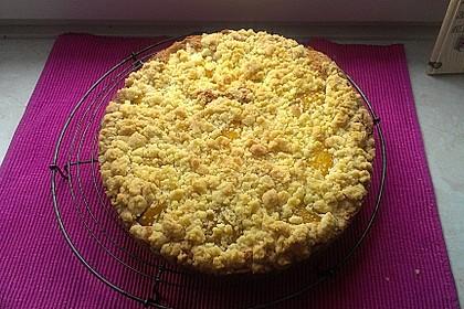 Easy Streuselkuchen mit Obst 44