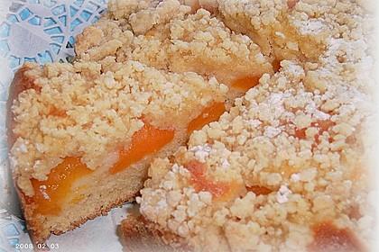 Easy Streuselkuchen mit Obst 7