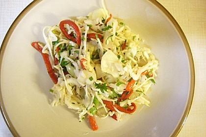 Süßsaurer Weißkohlsalat mit Paprika und Gurke 1