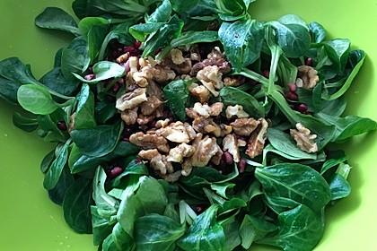 Salat an Balsamico-Honig-Vinaigrette mit Granatapfelkernen und Walnüssen (Bild)