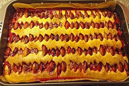 Zwetschgenkuchen 8
