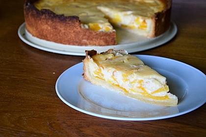 Pfirsich-Nektarinen-Kuchen 2
