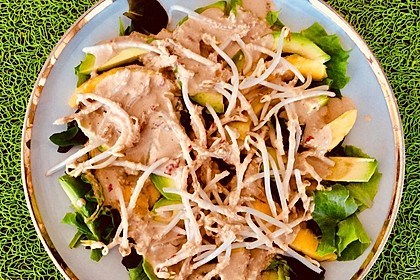 Avocado-Mango-Salat Asia