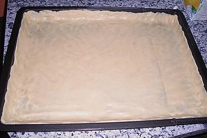 Quark - Mandarinen - Blechkuchen 26