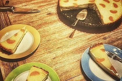 Quark - Mandarinen - Blechkuchen 3