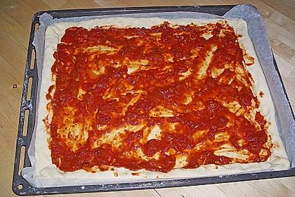 Tomatensoße für Pizza 20