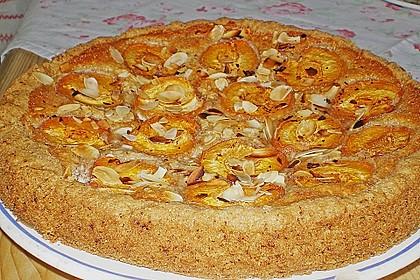 Aprikosenkuchen mit Mandelguss 4