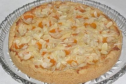 Aprikosenkuchen mit Mandelguss 5