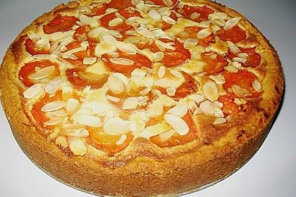 Aprikosenkuchen mit Mandelguss 7