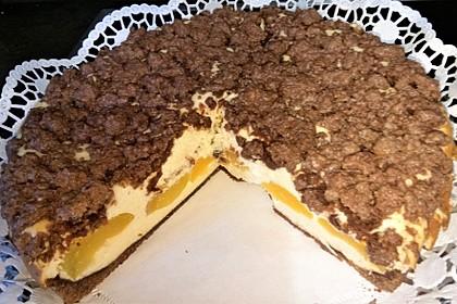 Aprikosen-Schoko-Käsekuchen mit Streuseln (Bild)