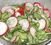 Gurken-Radieschen-Salat (Bild)