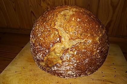 Bierkrusten-Brot aus dem Bräter (Bild)