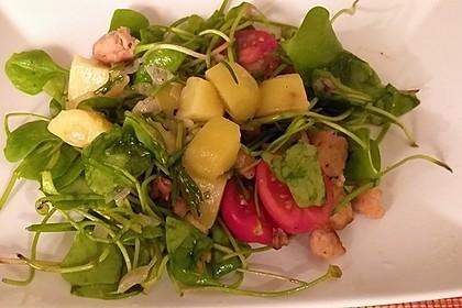 Postelein-Salat auf Kartoffel-Vinaigrette