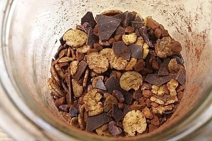 Schokomüsli proteinreich (Bild)