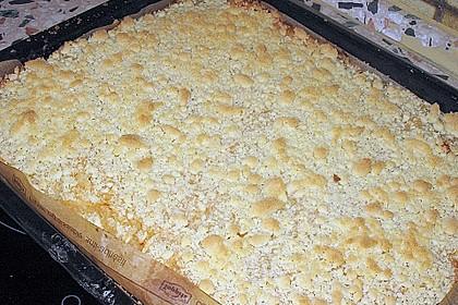 Streusel - Apfel - Blechkuchen wie bei Oma 3