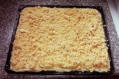 Streusel - Apfel - Blechkuchen wie bei Oma 1