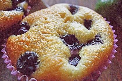 Heidelbeer - Blechkuchen 21