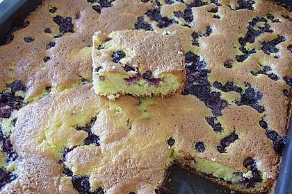 Heidelbeer - Blechkuchen 17