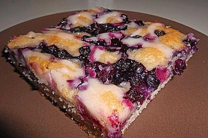 Heidelbeer - Blechkuchen 29
