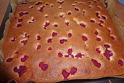 Heidelbeer - Blechkuchen 10
